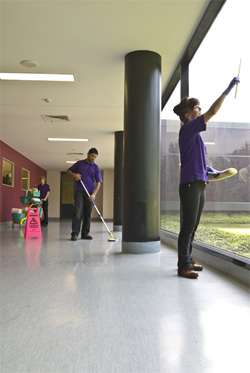 Purple Pear Commercial Cleaning